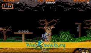 Dai Makai-Mura (Japan) Screenshot