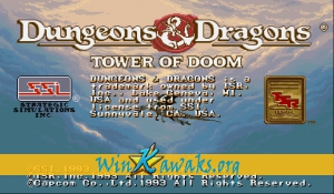 Dungeons and Dragons: Tower of Doom (Hispanic 940125)