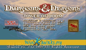 Dungeons and Dragons: Tower of Doom (Japan 940113)