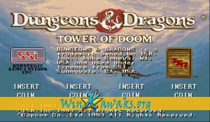 Dungeons and Dragons: Tower of Doom (Euro 940113)