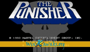 The Punisher (US 930422)